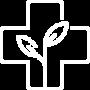medicina-integrativa-ico